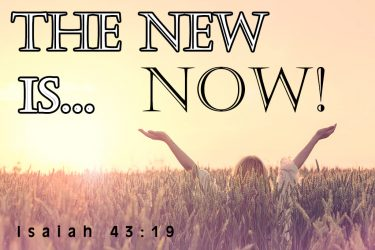 The New Is Now